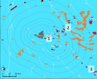 Sargasses : risque d'échouage fort pour les îles du Nord