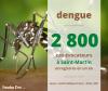 Dengue :